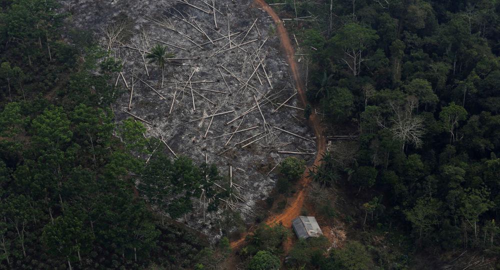 Área desmatada da Amazônia em Porto Velho, Rondônia.