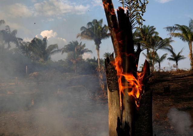 Floresta Amazônica em chamas, Iranduba, 20 de agosto de 2019