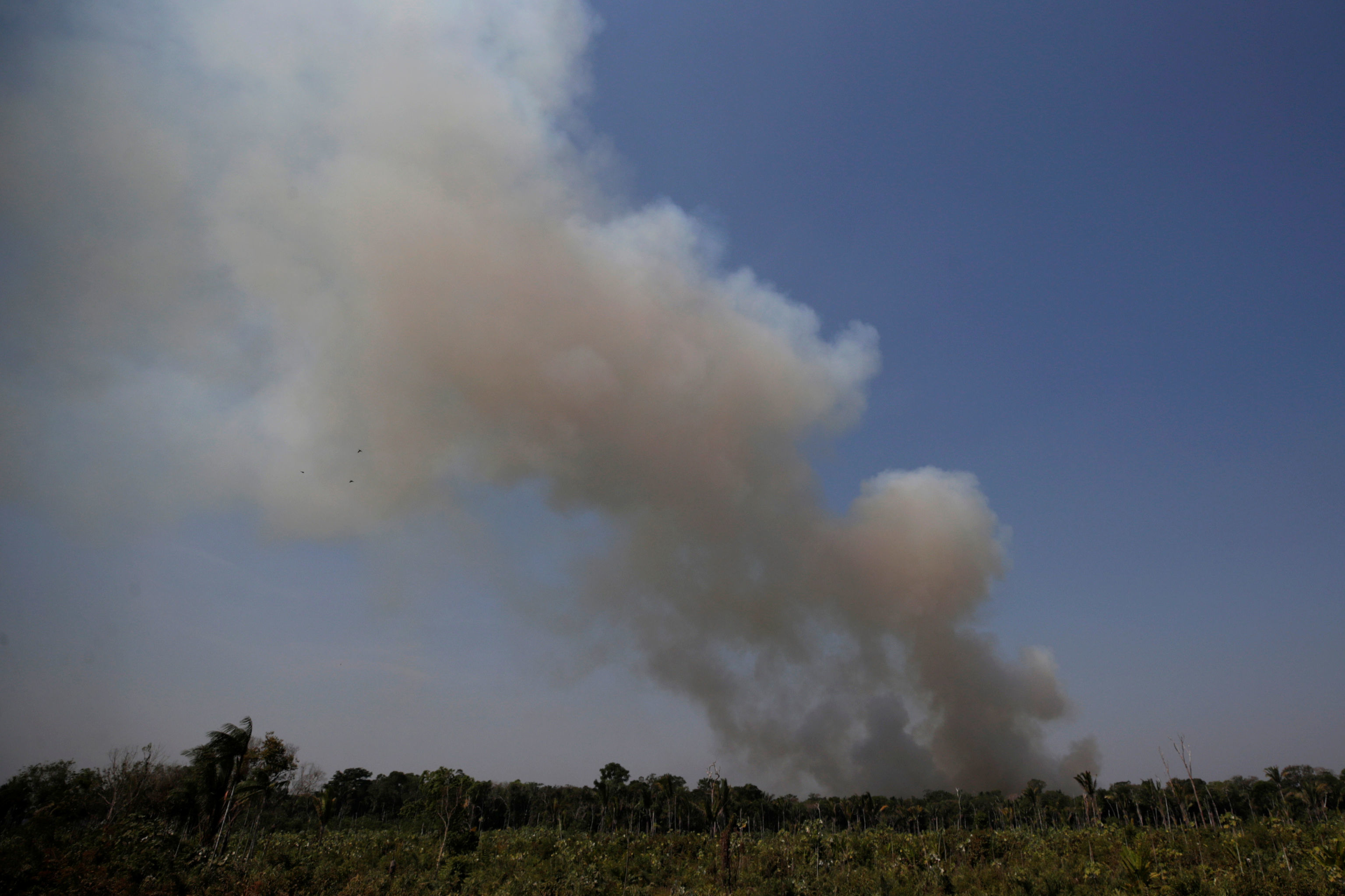 Foco de incêndio na Floresta Amazônica, Humaitá, Brasil, 14 de agosto de 2019