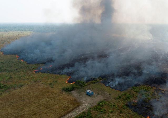 Vista aérea mostra fumaça subindo sobre terreno desmatado da selva amazônica em Porto Velho, Brasil, 27 de agosto de 2019