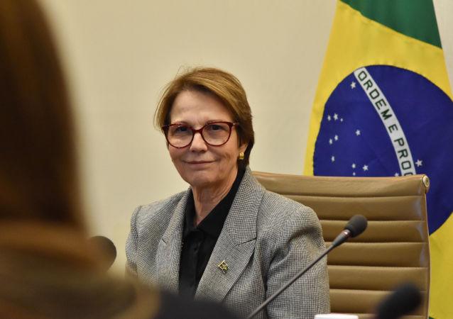 Ministra da Agricultura, Pecuária e Abastecimento paticipa do quarto Dialogo Brasil - Japão