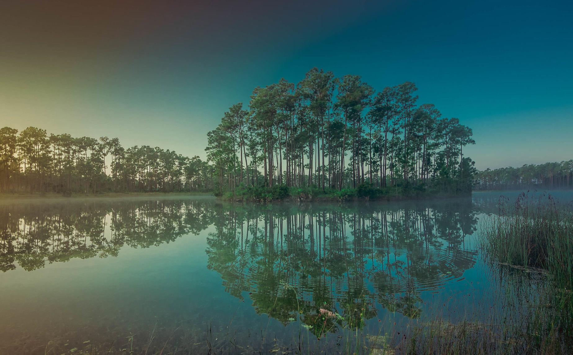 Parque Nacional de Everglades, Flórida, EUA.