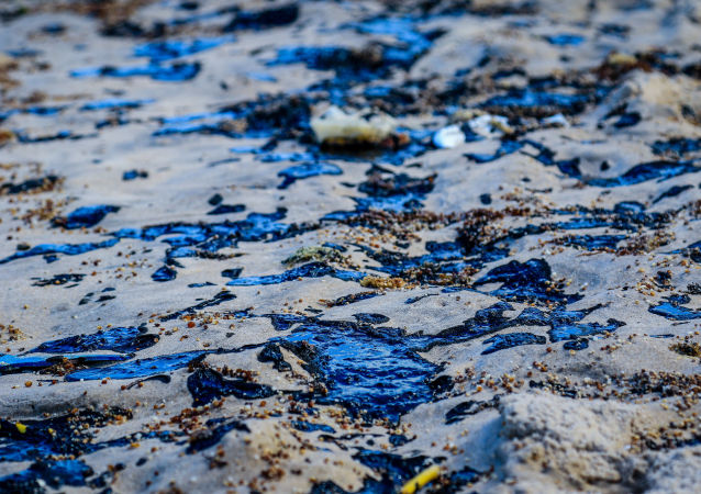 Manchas de petróleo na praia da Lagoa do Pau, em Alagoas (AL)