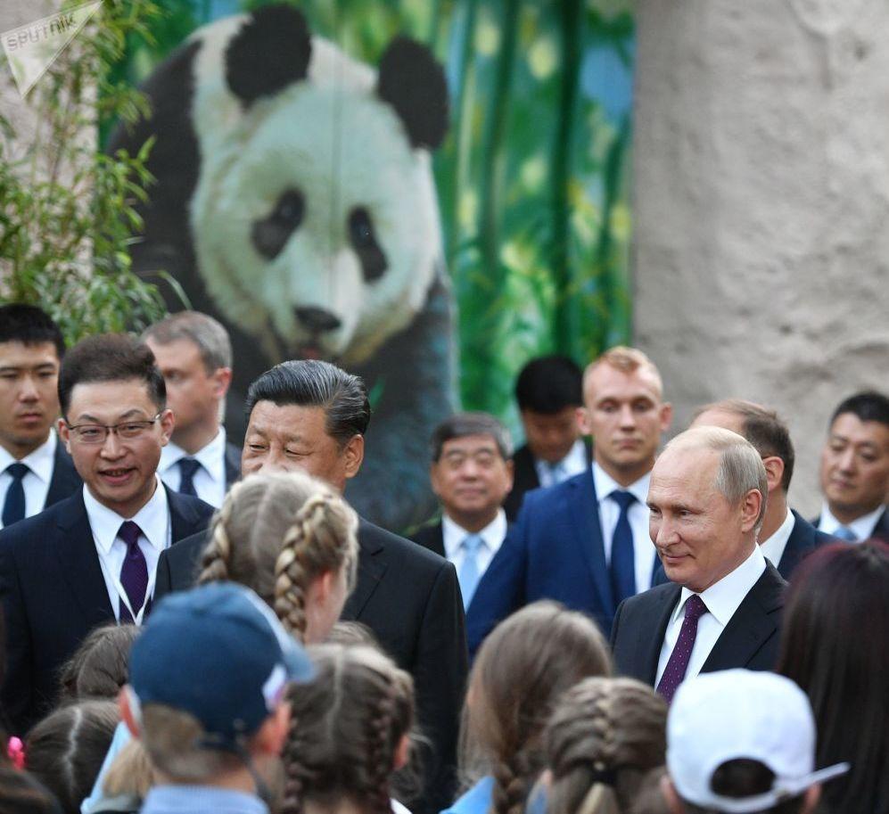 Presidente da Rússia, Vladimir Putin, recebe presente de Estado do presidente da China, Xi JInping: um urso panda, que se encontra no zoológico de Moscou