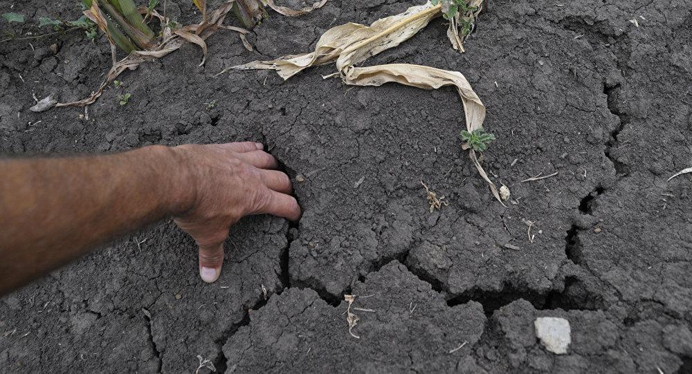 O presidente da Comissão Mista Permanente sobre Mudanças Climáticas, Senador Fernando Bezerra Coelho, acha que o Brasil precisa anunciar medidas ambientais mais ambiciosas até a reunião de Paris