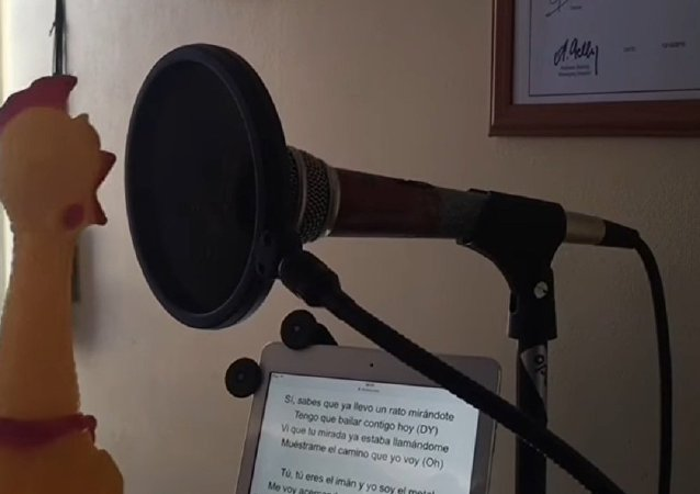 Frango apresenta versão original de 'Despacito'