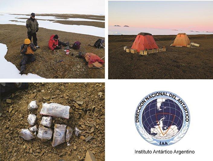 Imagens da expedição que encontrou os fósseis de uma plesiosauria com cerca de 150 milhões de anos na Antártica