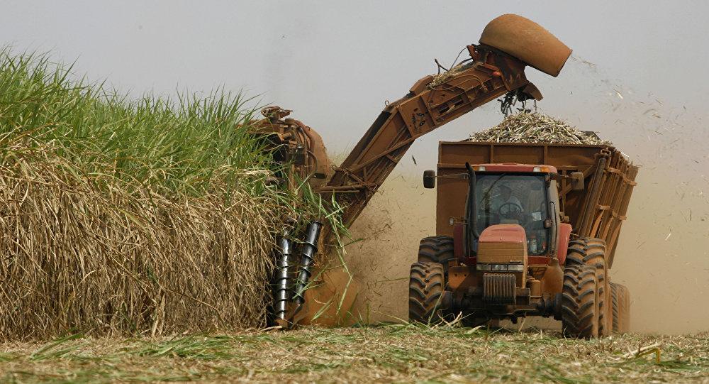 Exportações do agronegócio somaram US$ 96 bilhões em 2017