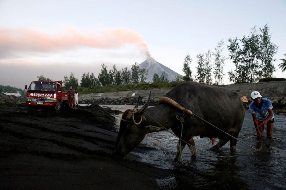 Residente local com búfalo junto ao rio, enquanto vulcão Mayon entra em erupção em Guniobatan, nas Filipinas