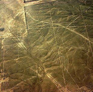 Linhas Nazca