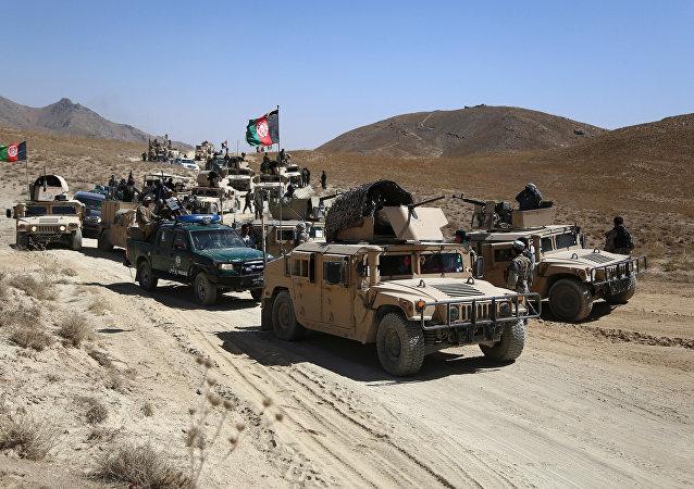 Forças de segurança afegãs participam da patrulha durante operação contra terroristas do Talibã