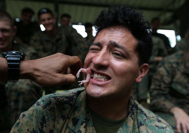 Fuzileiro naval come uma lagartixa gecko no âmbito dos treinamentos de sobrevivência, parte das manobras Cobra Gold 2018