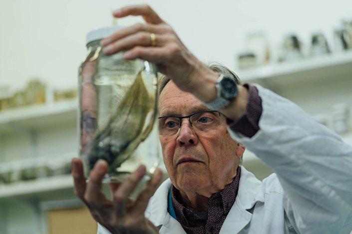 Ictiologista australiano segurando uma das espécies capturadas