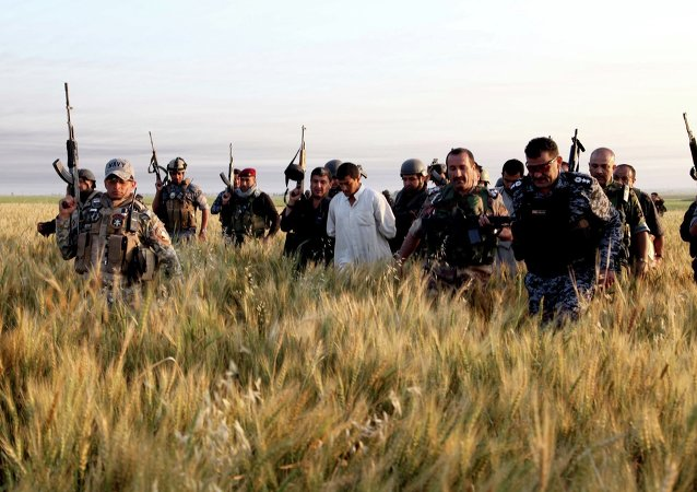 Iraqi security forces arrest suspected militants of the Islamic State in Iraq and the Levant (ISIL) during a raid and weapons search operation in Hawija.