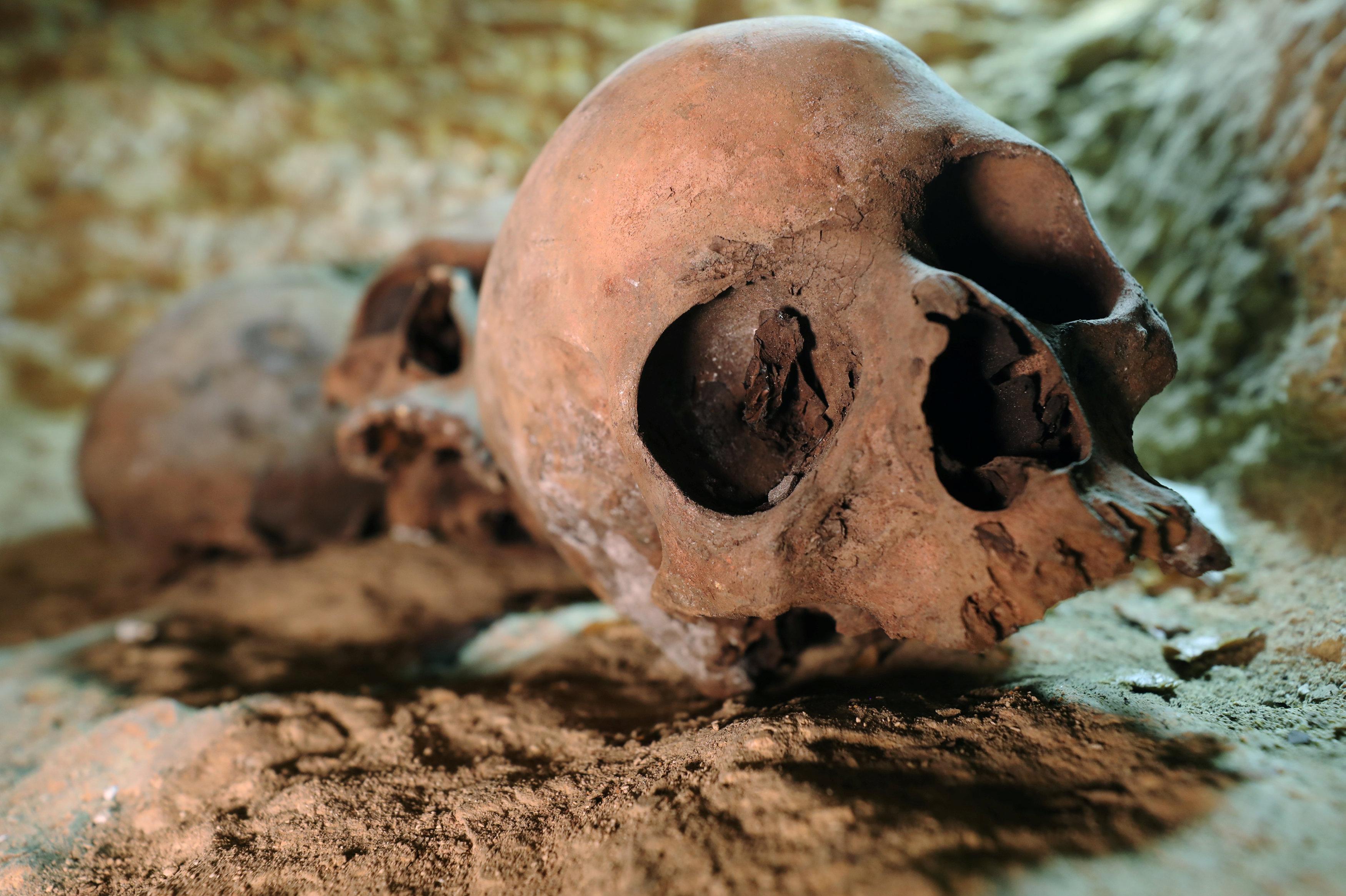 Crânios encontrados dentro da necrópole