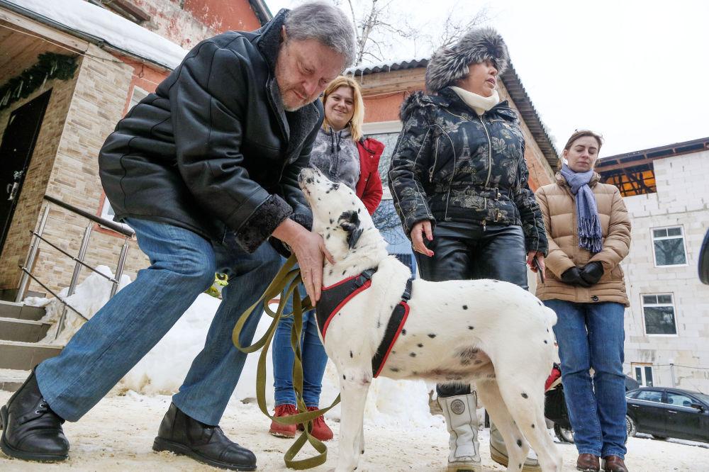 Candidato à Presidência da Rússia pelo partido Yabloko, Grigory Yavlinsky, visita asilo para cachorros sem teto