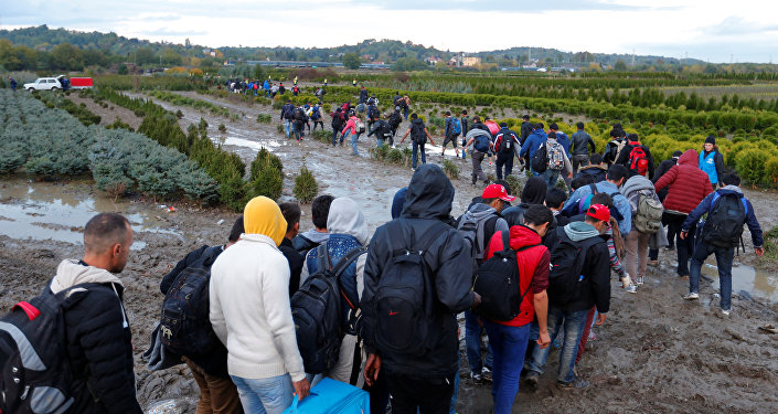 Refugiados atravessam fronteira em Zakany, Hungria, 16 de outubro de 2015