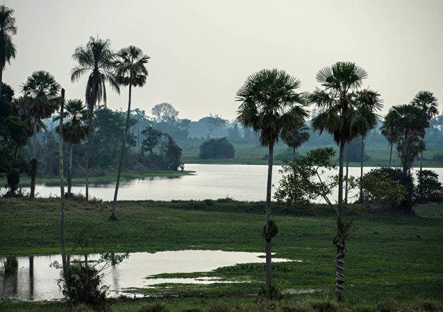 Vista do Pantanal de Cáceres, Brasil, 25 de agosto de 2014