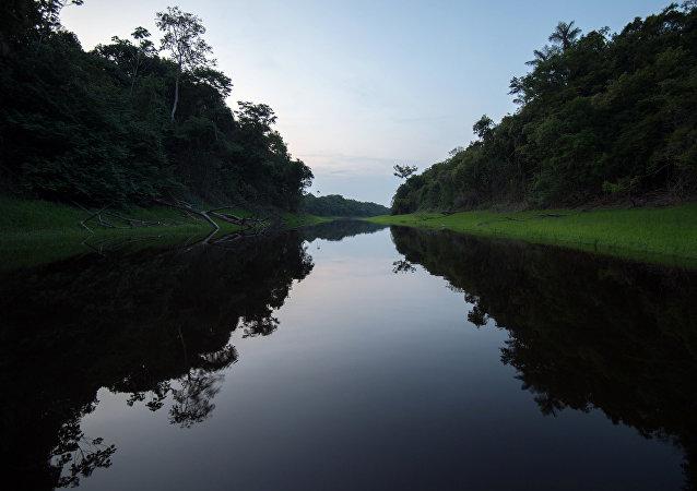 Vista do rio Negro em Manaus, no estado da Amazônia (Brasil), 8 de dezembro de 2015