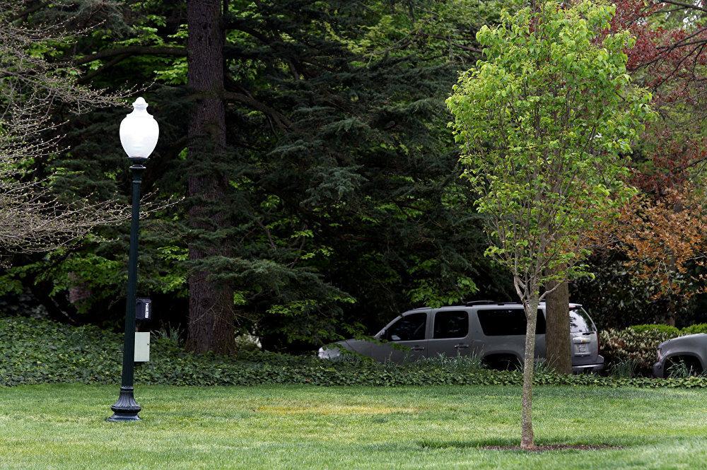 Local onde árvore foi plantada por Macron e Trump.