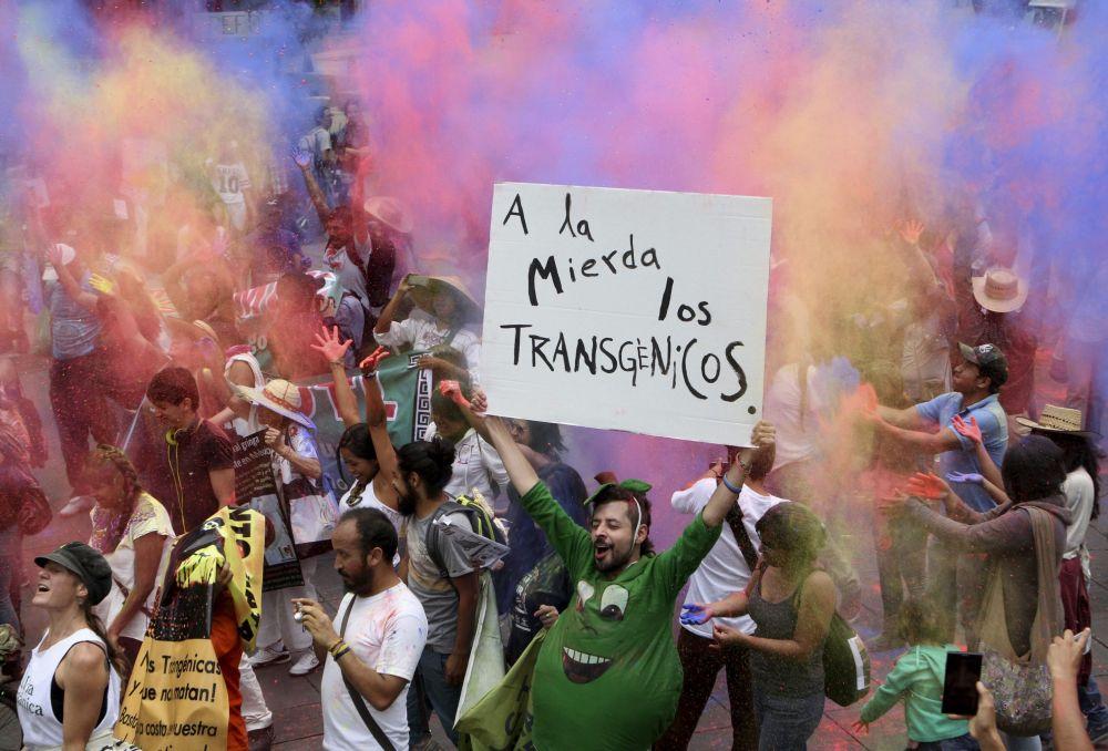 Manifestações contra os alimentos transgênicos no México.