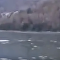Seria esse o monstro do lago Ness chinês?