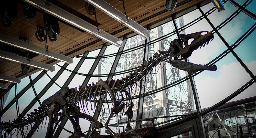 Esqueleto de um dinossauro carnívoro não identificado exibido no térreo da torre Eiffel em Paris, 2 de junho de 2018