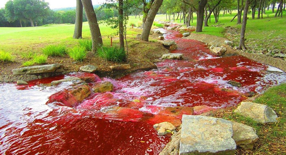 Rio vermelho com a tonalidade de sangue (imagem ilustrativa)