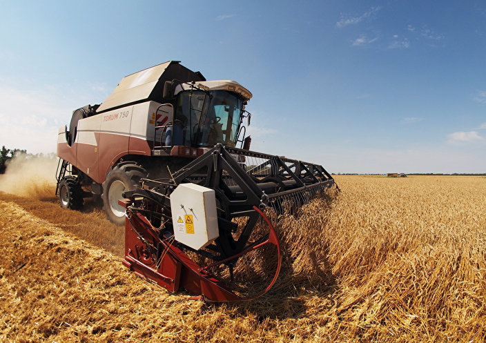 Colheita de trigo na região de Krasnodar, Rússia (imagem de arquivo)