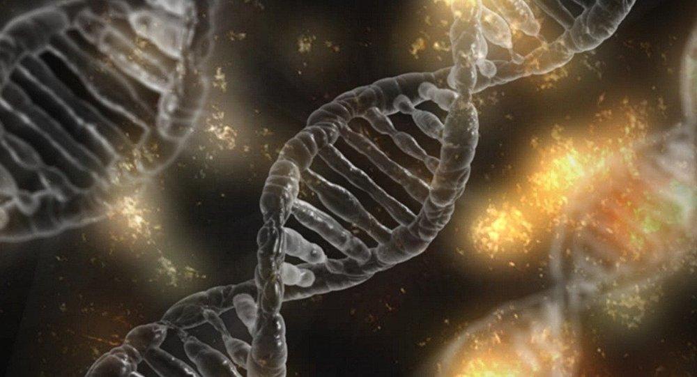 DNA (imagem referencial)