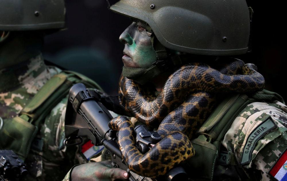 Soldado das forças especiais com uma cobra em volta do pescoço durante a parada militar em Assunção, Paraguai, em 15 de agosto de 2018
