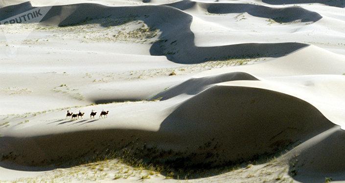 O deserto de Gobi, Mongólia