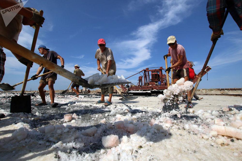 Exploração de sal rosa no lago Sasyk, na Crimeia