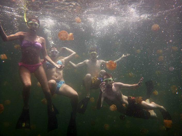 O lago das águas-vivas em Palau, no oceano Pacífico