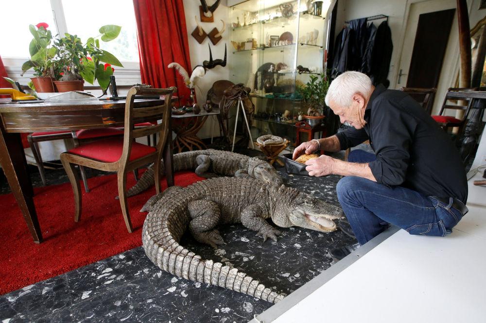 Francês de 67 anos, Philippe Gillet, posa para foto com crocodilo dentro de sua casa na cidade de Nantes, na França, em 19 de setembro de 2018