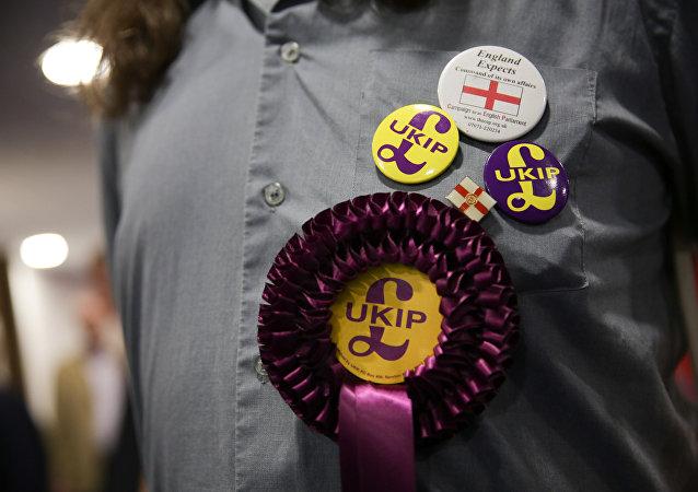 Um apoiador do Partido da Independência do Reino Unido (UKIP), contrário à União Europeia, usa uma rossete e um distintivo na Conferência de Outono do UKIP em Bournemouth, na costa sul da Inglaterra.