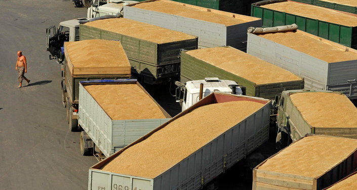 Terminal de grãos no porto de Novorossiysk