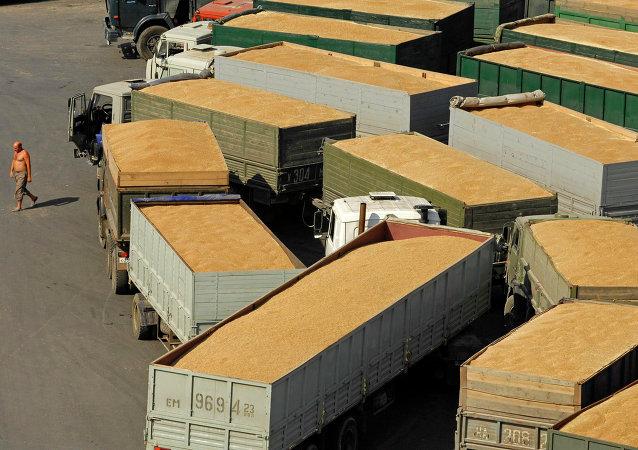 Terminal de grãos no porto de Novorossiysk, na região russa de Krasnodar