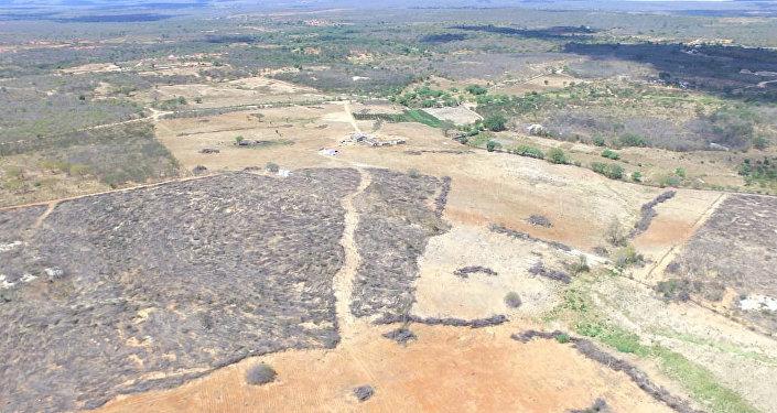 Ações de combate ao desmatamento em Pernambuco