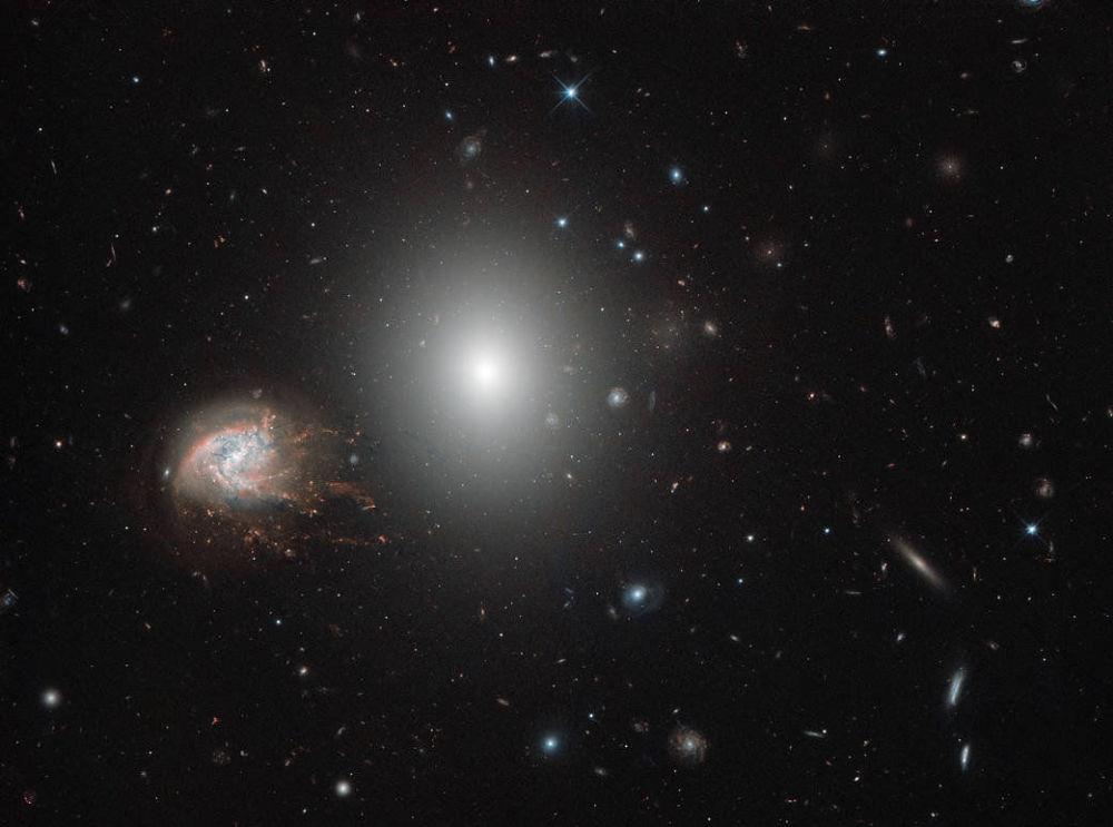 Galáxia espiral NGC 4858, localizada na constelação de Cabeleira de Berenice