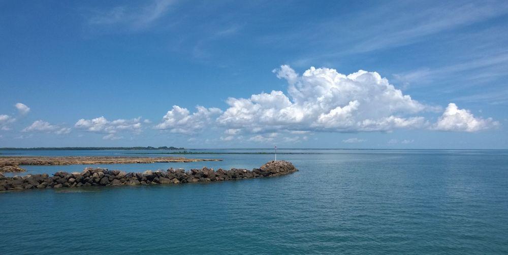 Praia Darwin na Austrália. As florestas de mangue são um paraíso para crocodilos. Além disso, o local pode estar cheio de águas-vivas e tubarões