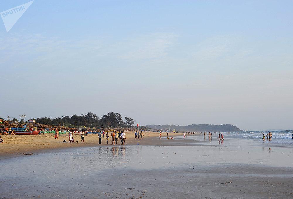 Praia de Calangute, Índia. Aqui, os turistas convivem com vacas. Todos os dias duas manadas pastam à entrada da praia. Seus donos não possuem funcionários bastantes para controlar os animais, portanto, as vacas fazem o que quiserem