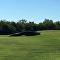 Crocodilo de 4,5 metros interrompe golfistas para dar uma descansada