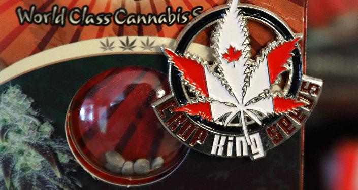 Um broche promovendo a empresa Crop King Seeds com as cores da bandeira canadense sobre um pacote de sementes de maconha, à venda em Vancouver, Canadá.