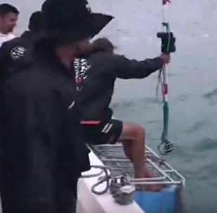 Pescador enfrenta grande tubarão-branco em luta feroz'