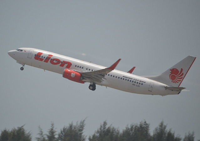 Boeing 737/8 of Lion Air at Singapore Changi-SIN,13/10/14.(Archive)
