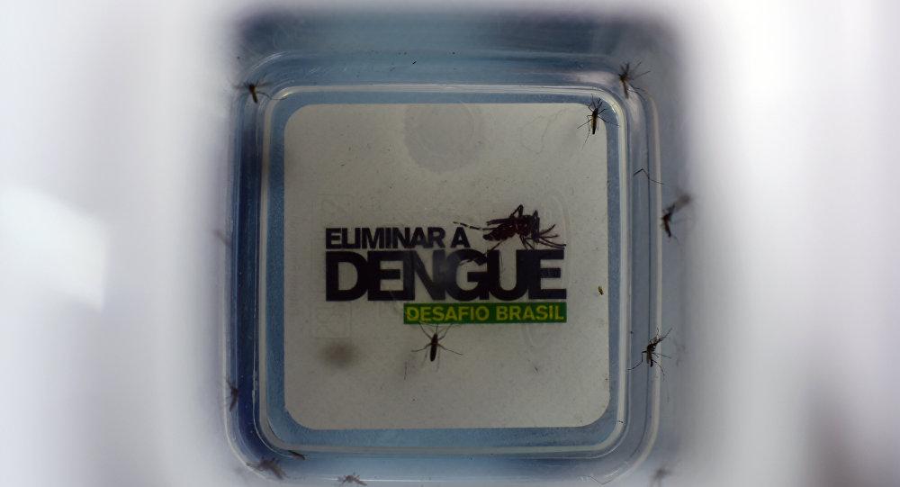 Número de infectados por dengue no Brasil no início de 2015  é 148% maior do que o registrado nos primeiros meses de 2014