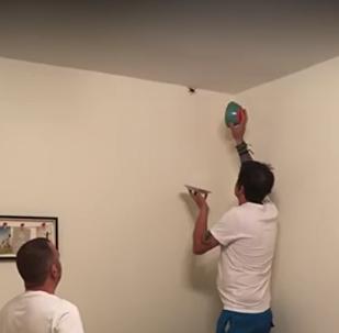 História arrepiante sobre 3 homens que tentam capturar aranha