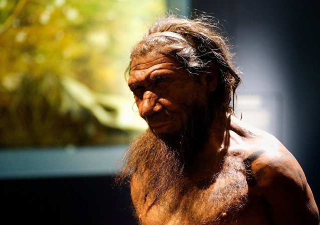 Un neandertal (imagem referencial)