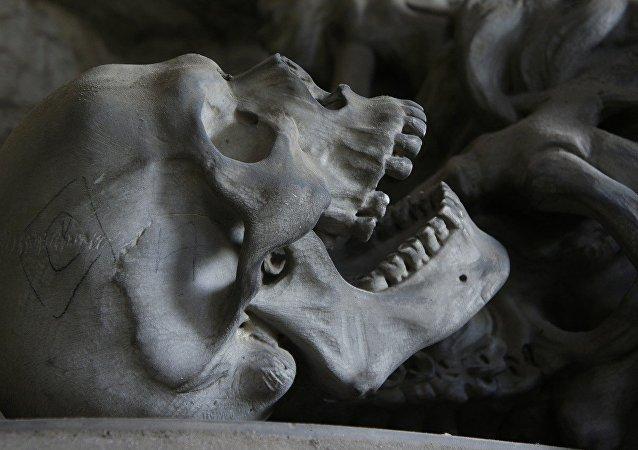 Esqueleto (imagem referencial)